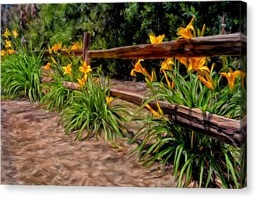 Day Lilies Canvas Print by Michael Pickett