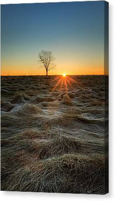 Daybreak Canvas Print by Bill  Wakeley