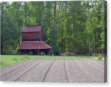Days Gone By--tobacco Barn Series  Canvas Print by Suzanne Gaff