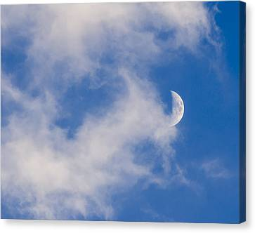 Daytime Moon Canvas Print by Carolyn Marshall