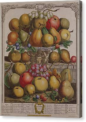 December, From Twelve Months Of Fruits, By Robert Furber C.1674-1756 Engraved By Henry Fletcher Canvas Print by Pieter Casteels