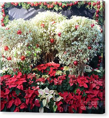 Decorated For Christmas Canvas Print by Kathleen Struckle