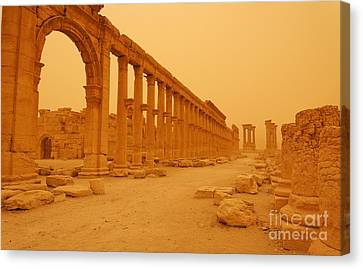 Decumanus The Colonnaded Street At Palmyra Syria In The Light After A Sandstorm Canvas Print by Robert Preston