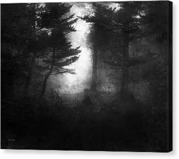Deep In The Dark Woods Canvas Print by Theresa Tahara