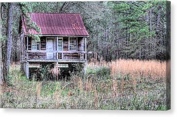 Deep In The Woods Canvas Print by JC Findley