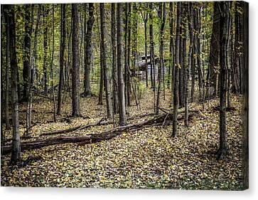 Deep Woods Cabin Canvas Print by Tom Mc Nemar