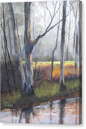 Deep Woods Canvas Print by Frank Cochran