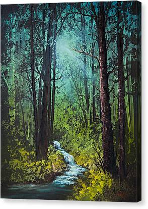 Deep Woods Stream Canvas Print by C Steele