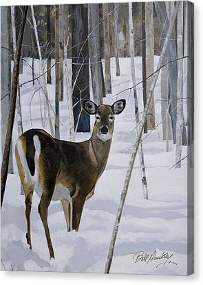 Deer In The Snow Canvas Print by Bill Dunkley