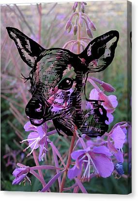 Deer On Flower Canvas Print by Konni Jensen