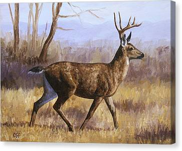 Deer Painting - Trotting Buck Canvas Print by Crista Forest