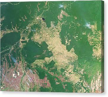 Deforestation In The Amazon Canvas Print by Nasa Earth Observatoryscience Photo Library