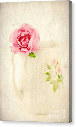 Delicate Canvas Print by Darren Fisher