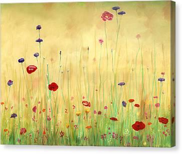 Delicate Poppies Canvas Print by Cecilia Brendel