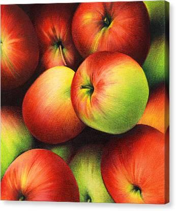 Delicious Apples Canvas Print by Natasha Denger
