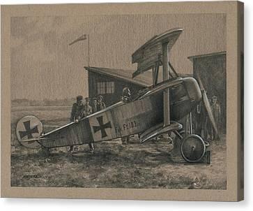 Der Junge Adler Canvas Print by Wade Meyers