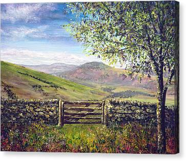 Derbyshire Stone Wall Canvas Print by Ann Marie Bone