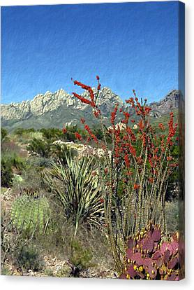 Desert Bloom Canvas Print by Kurt Van Wagner