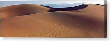 Desert Death Valley Ca Usa Canvas Print by Panoramic Images