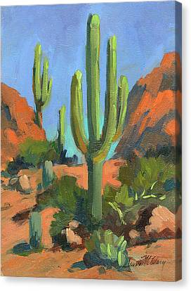 Desert Morning Saguaro Canvas Print by Diane McClary