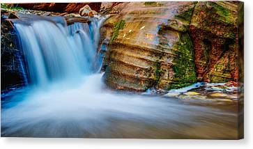 Desert Oasis Canvas Print by Chad Dutson