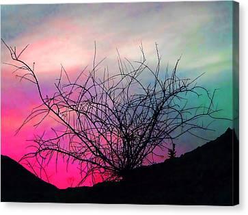Desert Sunset Canvas Print by Terril Heilman