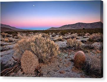 Desert Twilight Canvas Print by Peter Tellone