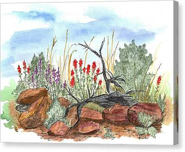 Desert Wildflowers Canvas Print by Cathie Richardson