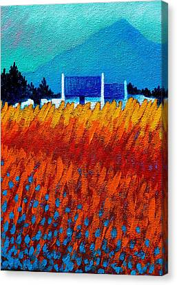 Detail From Golden Wheat Field Canvas Print by John  Nolan
