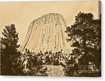 Devils Tower National Monument Between Trees Wyoming Usa Rustic Canvas Print by Shawn O'Brien
