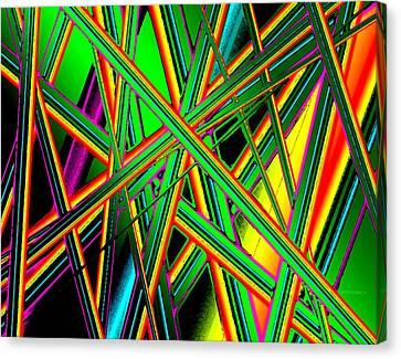 Diagonal Lines Canvas Print by Mario Perez