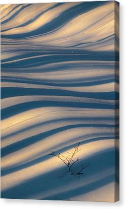 Diagonal Lines Canvas Print by Rob Travis