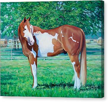 Diamond Of Riverview Ranch Canvas Print by Vickie Fears