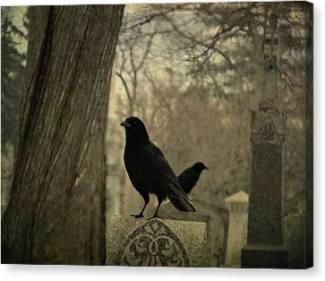 Different Diections Canvas Print by Gothicolors Donna Snyder