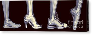 Different Shoes X-ray  Canvas Print by Guy Viner