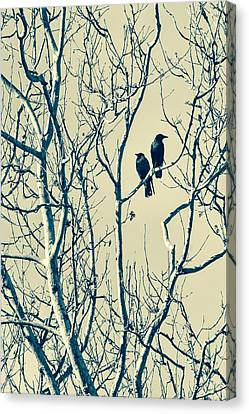 Differing Views Canvas Print by Caitlyn  Grasso