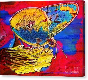 Digital Mixed Media Butterfly Canvas Print by Maestro
