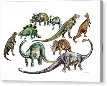 Dinosaurs Canvas Print by Deagostini/uig