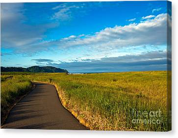 Discovery Trail Canvas Print by Robert Bales