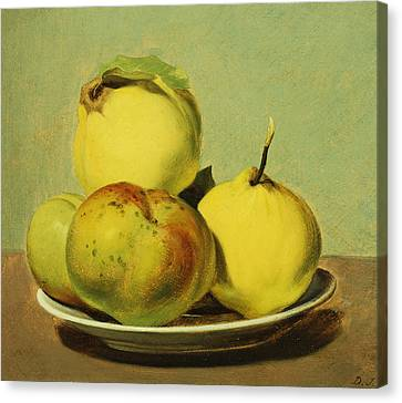 Dish Of Apples And Quinces Canvas Print by David Johnson