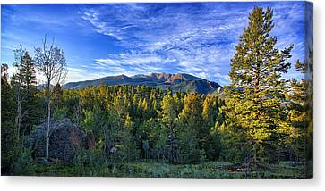 Distant Giant Canvas Print by Thomas Zimmerman