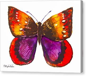 Diva Moth Canvas Print by Patricia Allingham Carlson