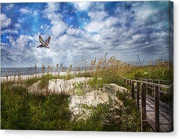 Divine Beach Day  Canvas Print by Betsy C Knapp