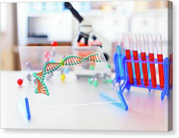 Dna Strand On A Monitor In A Lab Canvas Print by Wladimir Bulgar