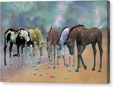 Do You See Stars Canvas Print by Betsy Knapp