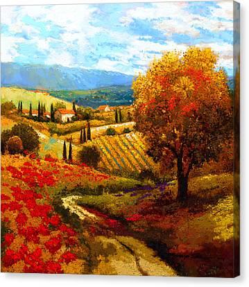 Dodogne Vineyard Canvas Print by Kanayo Ede