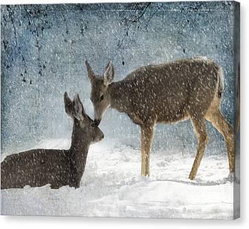 Doe A Deer Canvas Print by Juli Scalzi