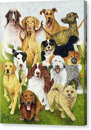 Dog Days Canvas Print by Pat Scott