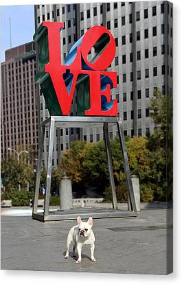 Dog Love Canvas Print by Lisa Phillips