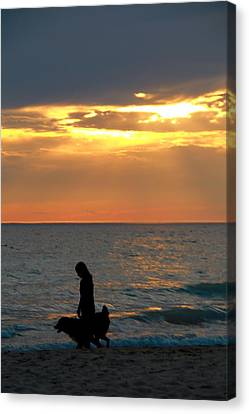 Dog Walk At Sunset On The Beach Canvas Print by Dan Sproul